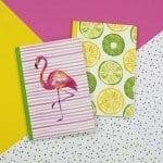 tropical flamingo notebook & fruit notebook